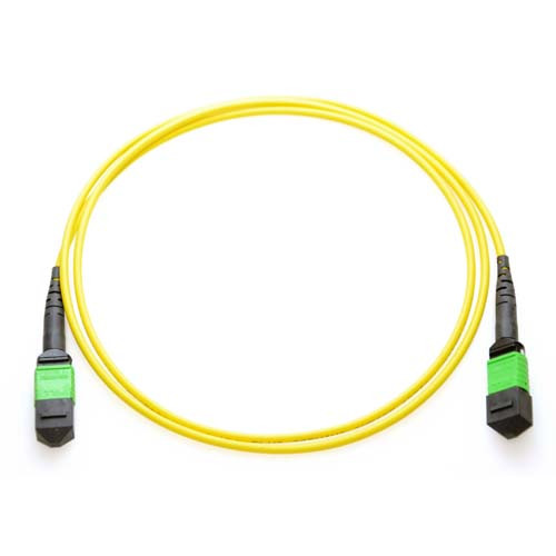 8m MTP 9/125 Plenum Rated Single Mode 12 Strand Fiber Patch Cable - Yellow
