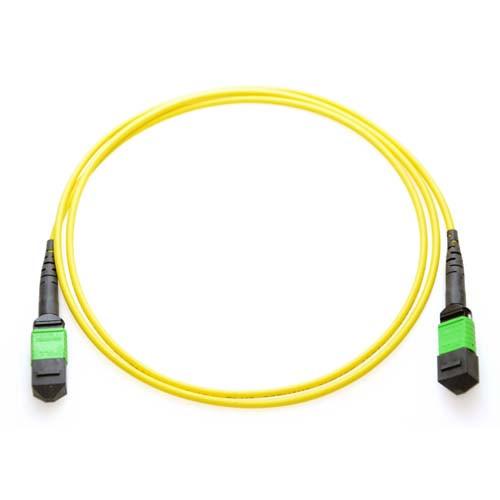 48m MTP/MTP 12-Strand Singlemode 9/125 Fiber Trunk Cable Yellow