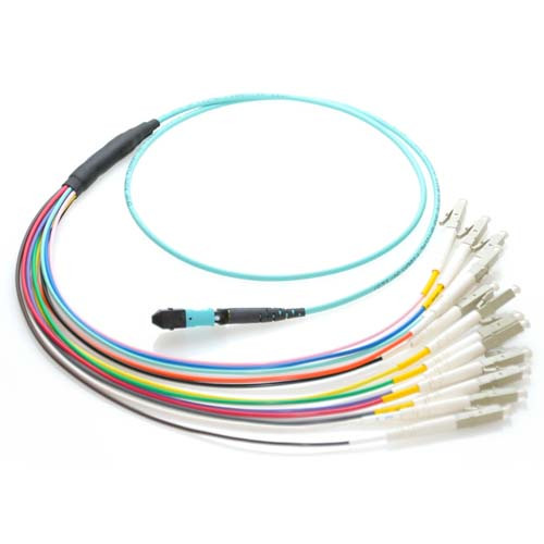 1m MTP to LC 10Gb 50/125 Plenum Rated Multimode 12 Strand Fiber Patch Cable - Aqua